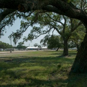 Brazoria Lakes RV Resort entrance with tree