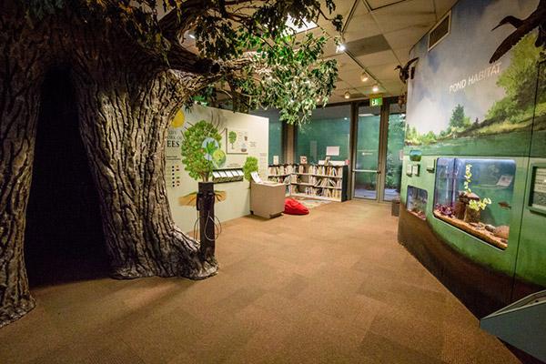 Houston Arboretum and Nature Center | Quality RV Resorts