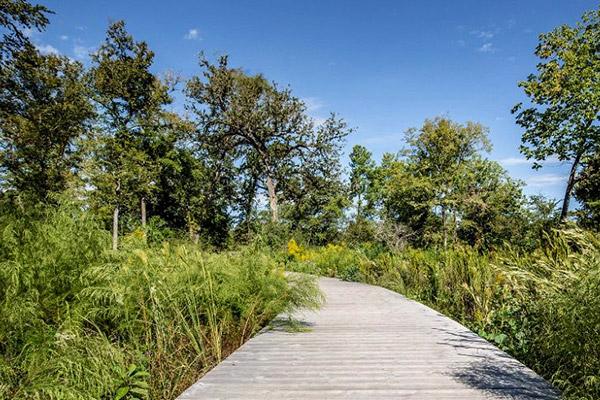 Houston Arboretum & Nature Center trails